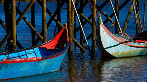 Antique Boats (photo: CVR Tejo)