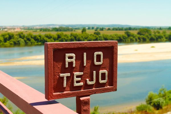 Portuguese White Wines from the Tejo Region